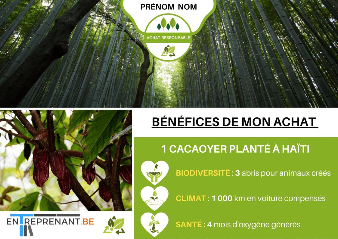 écologie et reforestation avec entreprenant.be