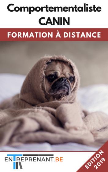 Formation à distance pour devenir comportementaliste canin